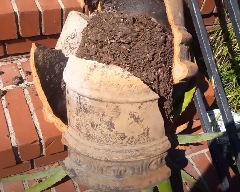 Глиняный горшок разбился