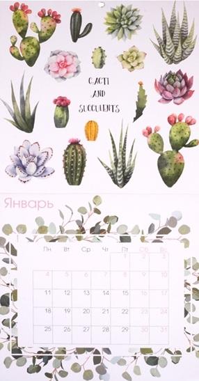 Календарь 2021 с кактусами