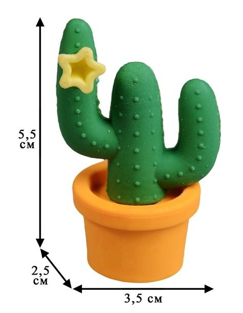 стиралка кактус