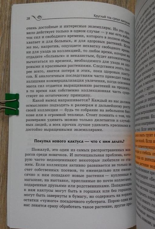 Книги о кактусах советы по уходу