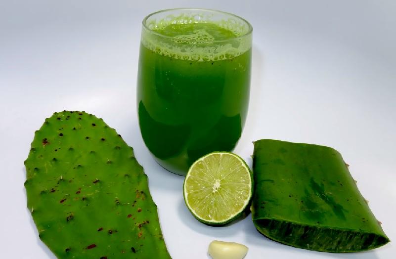 Применение кактусов